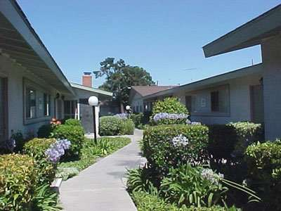 Orange Tree Apartments in Garden Grove CA